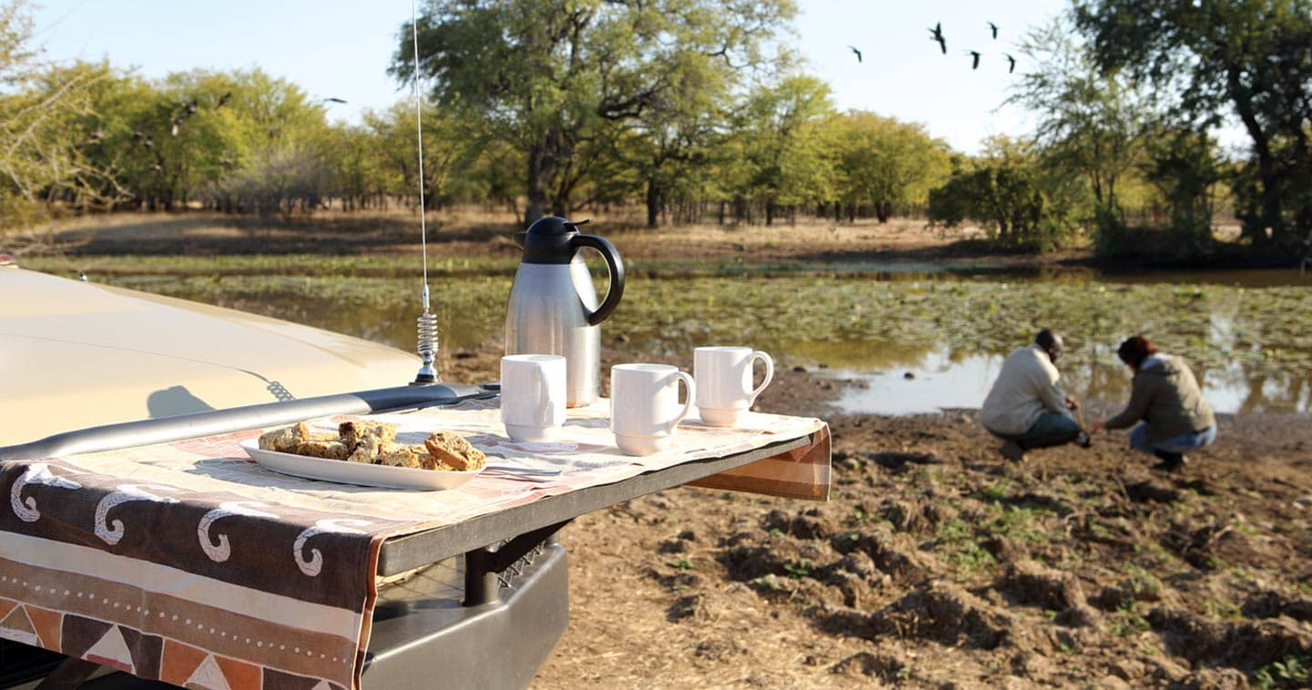 Game Drive at Amanzi Campin Lower Zambezi National Park