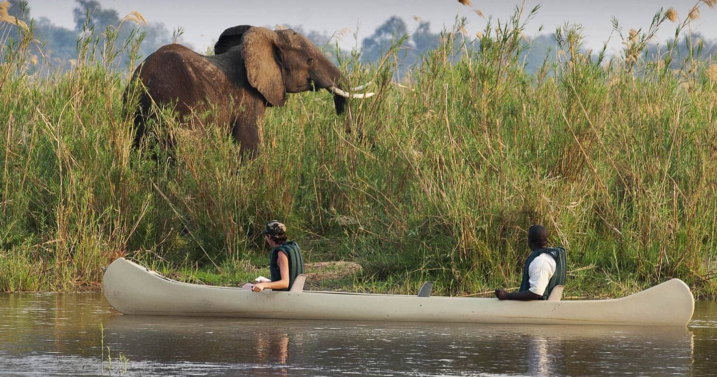An Experience Beyond the Expected at Baines River Camp in Lower Zambezi National Park