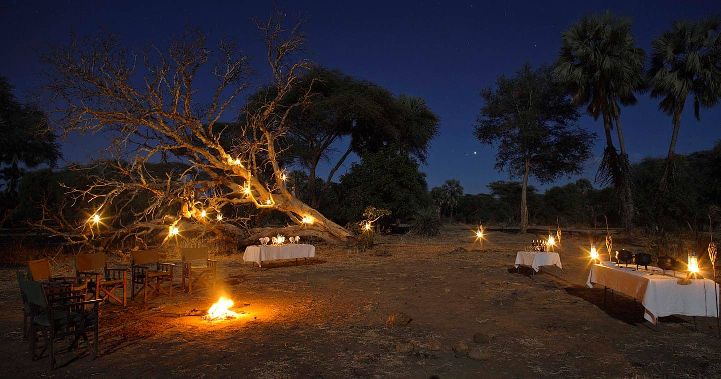 Dining Experience at Potato Bush Camp, a Feast for the Senses